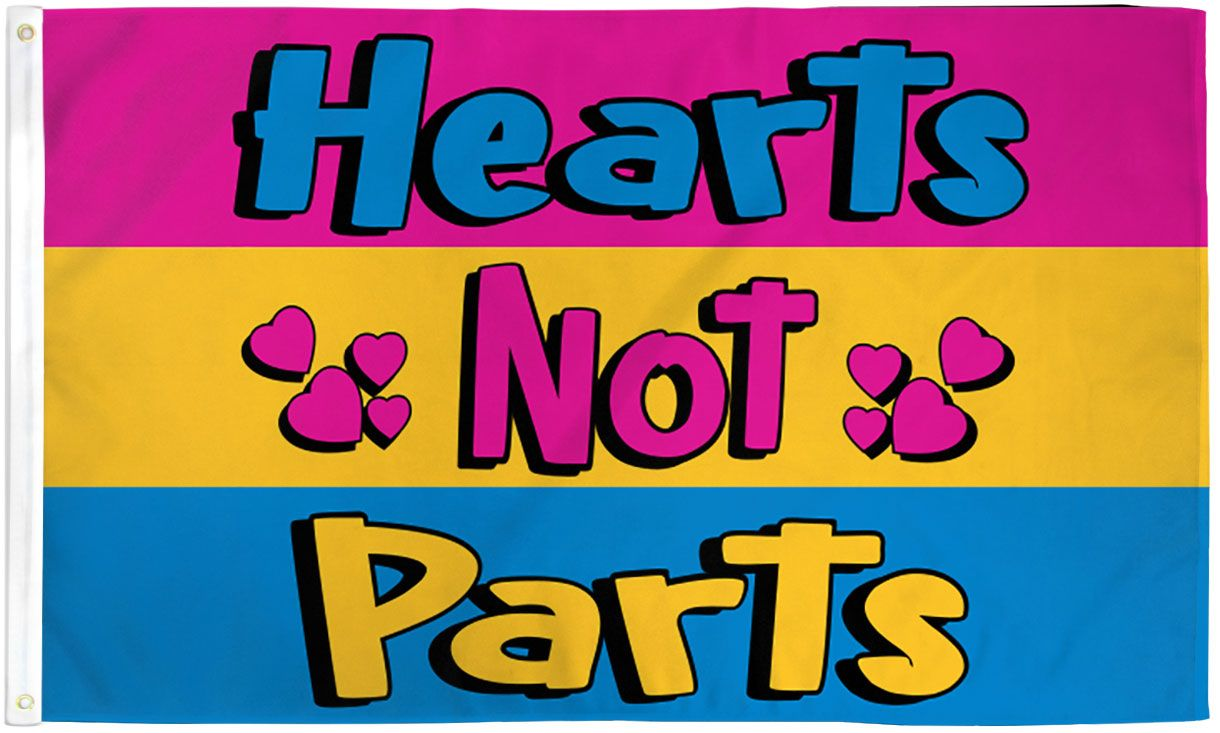 PanSexual Hearts Not Parts Flag